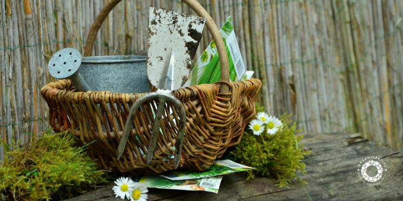 Spazi all'aria aperta: il kit del perfetto giardiniere