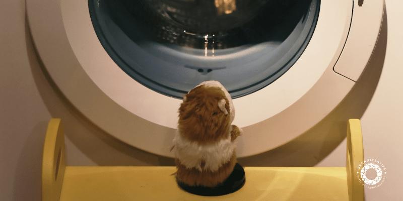 Manutenzione e pulizia della lavatrice